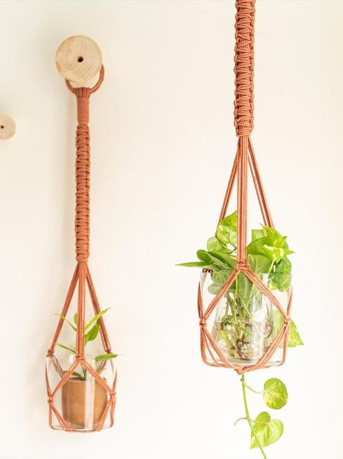 One O Eight Knots Decor Pink Plant Holders