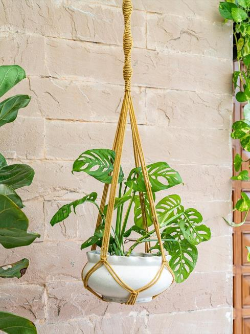 One O Eight Knots Decor Yellow Plant Holders